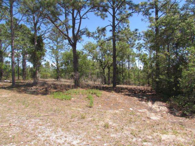 0 SW Hyacinth Ct., Dunnellon, FL 34432 (MLS #554418) :: Realty Executives Mid Florida
