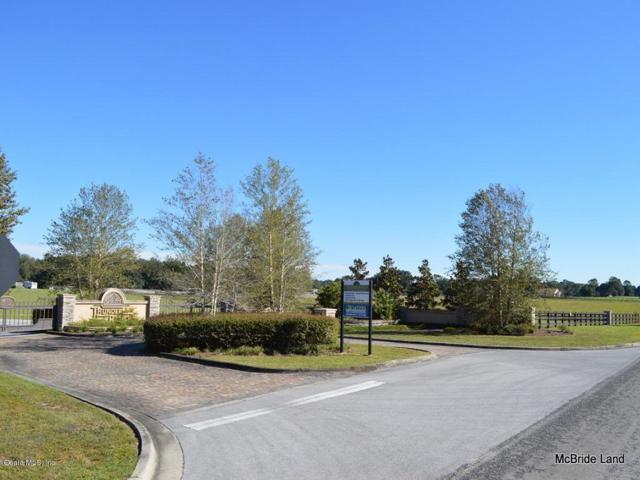 Lot 4 NE 111 Lane Road, Anthony, FL 32617 (MLS #554631) :: Pepine Realty