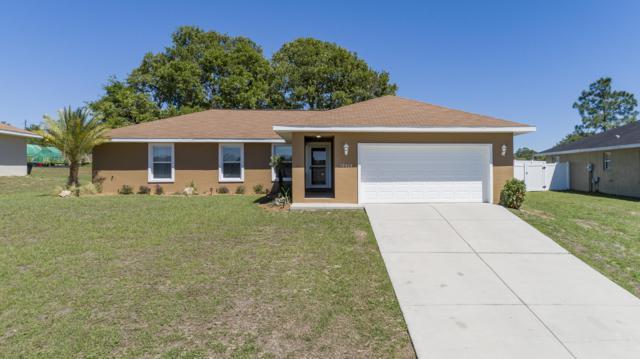 12439 Se 102nd Ave, Belleview, FL 34420 (MLS #554651) :: Bosshardt Realty