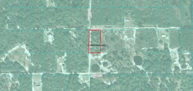 00 SW 157 Lane, Dunnellon, FL 34432 (MLS #554702) :: Pepine Realty