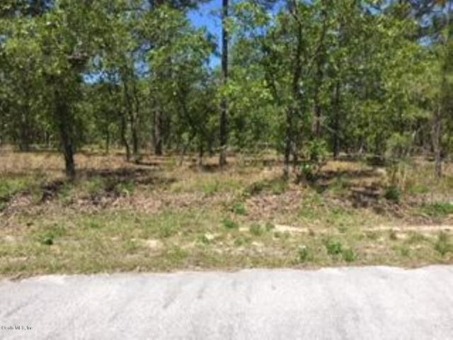 00 NW Narcissus Road, Dunnellon, FL 34431 (MLS #554712) :: Thomas Group Realty