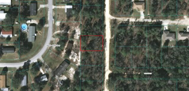 TBD SE 102ND Terrace, Belleview, FL 34421 (MLS #554820) :: Realty Executives Mid Florida