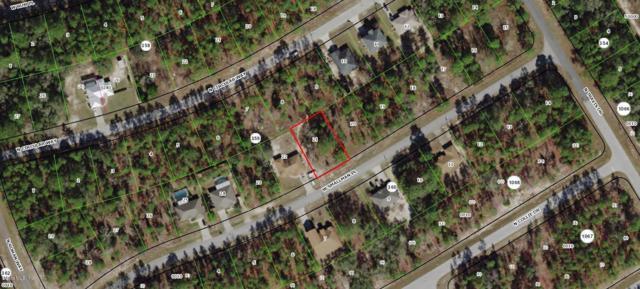 883 W Smallman Place, Citrus Springs, FL 34433 (MLS #554852) :: Bosshardt Realty