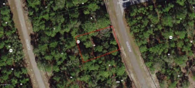 8648 N Roman Way, Citrus Springs, FL 34433 (MLS #554853) :: Bosshardt Realty