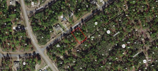8423 N Bolder Drive, Citrus Springs, FL 34433 (MLS #554855) :: Bosshardt Realty