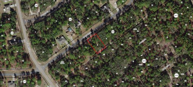 8431 N Bolder Drive, Citrus Springs, FL 34433 (MLS #554870) :: Bosshardt Realty