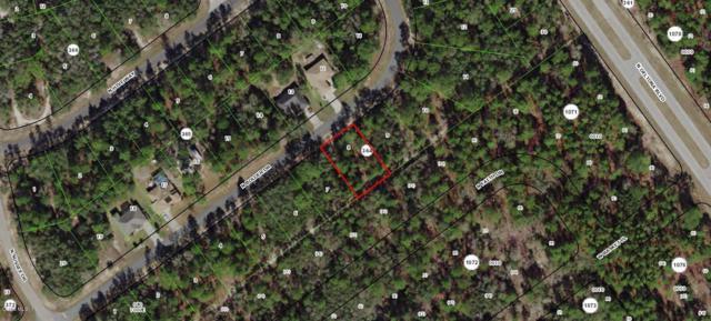 8459 N Bolder Drive, Citrus Springs, FL 34433 (MLS #554871) :: Bosshardt Realty