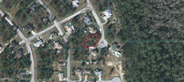 0 Redwood Run Lane, Ocala, FL 34472 (MLS #554906) :: Bosshardt Realty