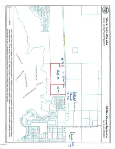 21502 W Hwy 40, Dunnellon, FL 34431 (MLS #554978) :: Realty Executives Mid Florida
