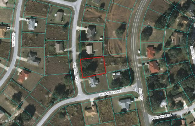 TBD Water Trak Trail, Ocala, FL 34472 (MLS #555008) :: Pepine Realty