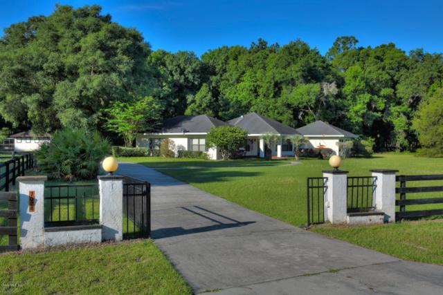 7024 SW 93rd Street Road, Ocala, FL 34476 (MLS #555062) :: Realty Executives Mid Florida