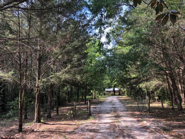14520 NE 209th Terrace Road, Fort Mccoy, FL 32134 (MLS #555152) :: Bosshardt Realty