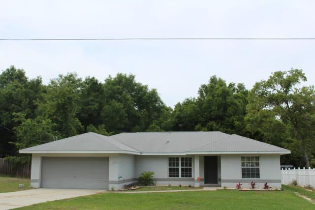 13340 SE 102nd Court, Belleview, FL 34420 (MLS #555216) :: Bosshardt Realty