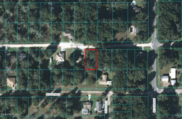 3510 SE 138th Place, Summerfield, FL 34491 (MLS #555222) :: Pepine Realty