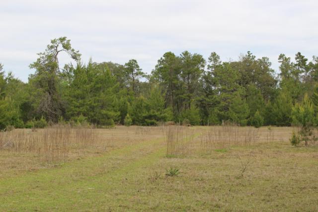10231 NE 211th Place, Fort Mccoy, FL 32134 (MLS #555329) :: Bosshardt Realty