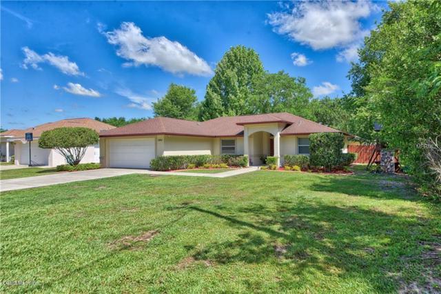 3841 SE 137th Street, Summerfield, FL 34491 (MLS #555356) :: Pepine Realty