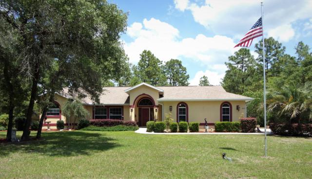 8517 N Linwood Loop, Citrus Springs, FL 34433 (MLS #555380) :: Bosshardt Realty