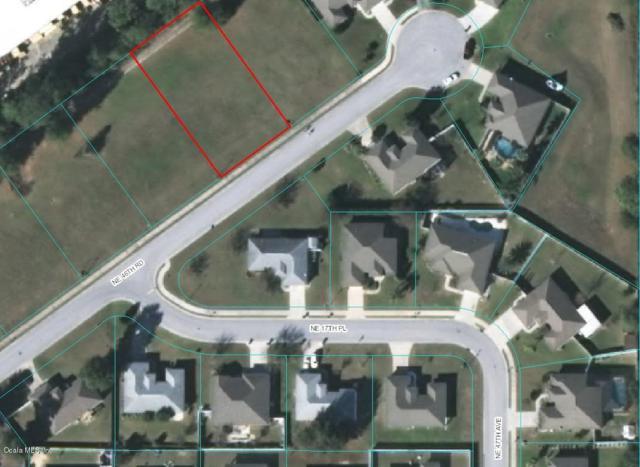 1709 NE 46th Road, Ocala, FL 34470 (MLS #555458) :: Bosshardt Realty