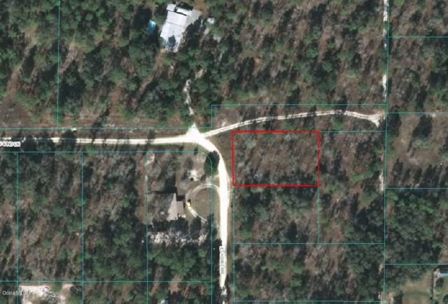 0 SW 42nd Lane, Dunnellon, FL 34432 (MLS #555502) :: Bosshardt Realty