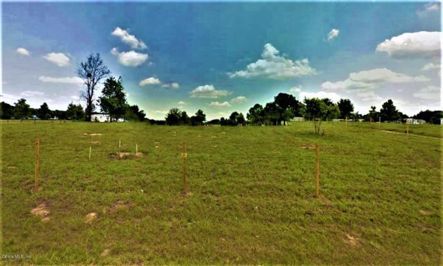 9879 S Buckskin Ave., FLORAL CITY, FL 34436 (MLS #555552) :: Bosshardt Realty
