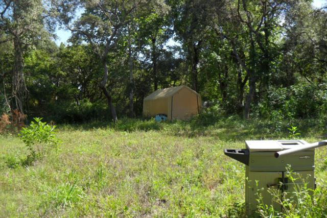 16433 NE 153rd Lane, Fort Mccoy, FL 32134 (MLS #555698) :: Bosshardt Realty