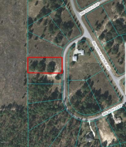 0 SW 66th Loop, Dunnellon, FL 34432 (MLS #555707) :: Realty Executives Mid Florida