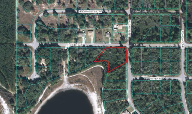 TBD Fisher Pass, Ocklawaha, FL 32179 (MLS #555717) :: Bosshardt Realty