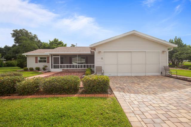 17688 SE 102 Circle, Summerfield, FL 34491 (MLS #555782) :: Realty Executives Mid Florida