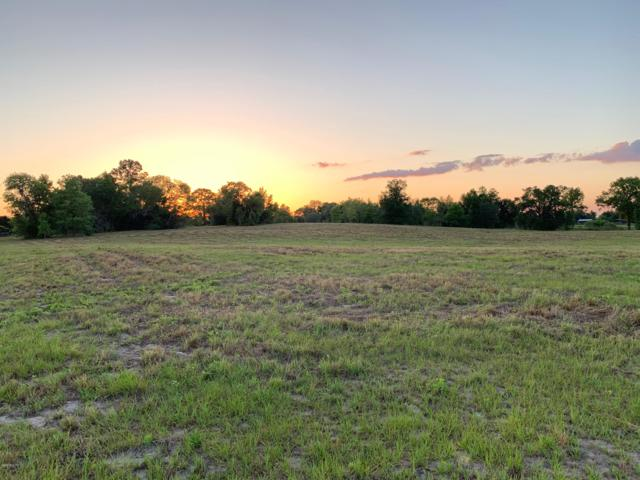 TBD NW 165th Court Road, Dunnellon, FL 34432 (MLS #555783) :: Pepine Realty