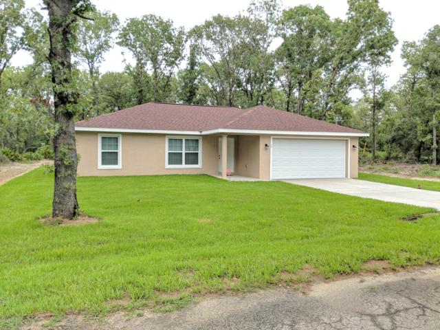 13329 SE 101st Avenue, Belleview, FL 34420 (MLS #555827) :: Bosshardt Realty