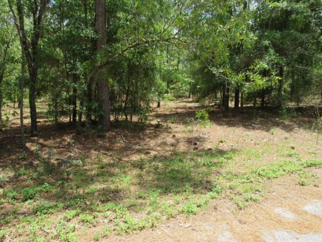 TBD SW 204 Circle, Dunnellon, FL 34431 (MLS #555869) :: Bosshardt Realty