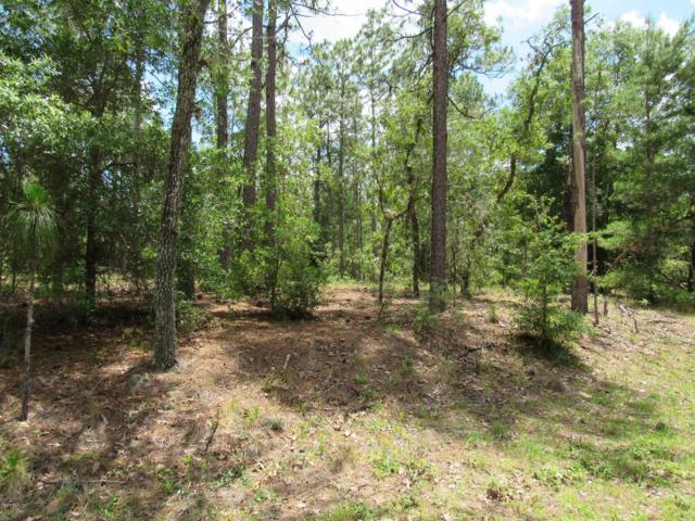 TBD SW 204th Circle, Dunnellon, FL 34431 (MLS #555872) :: Bosshardt Realty
