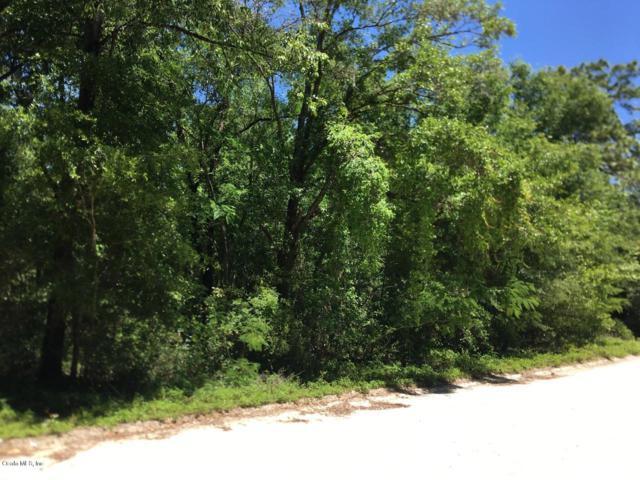 TBD NE 67th Lane, Bronson, FL 32621 (MLS #555883) :: Bosshardt Realty