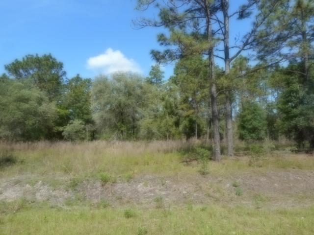 L 12 SW Big Tree Road, Dunnellon, FL 34431 (MLS #556013) :: Bosshardt Realty