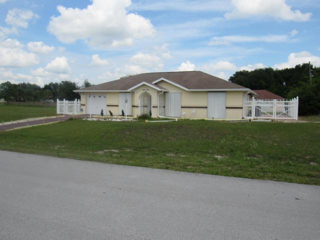 16325 SW 17 Terrace Road, Ocala, FL 34473 (MLS #556020) :: Pepine Realty