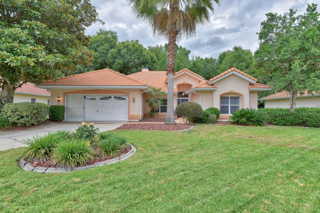 11455 SW 82nd Court Road, Ocala, FL 34481 (MLS #556024) :: Realty Executives Mid Florida