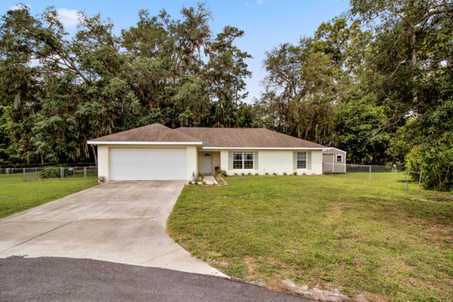 1 Fir Drive Trace, Ocala, FL 34472 (MLS #556094) :: Bosshardt Realty
