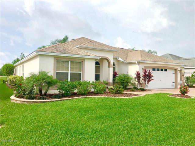 2200 Kaylee Drive, The Villages, FL 32162 (MLS #556127) :: Bosshardt Realty