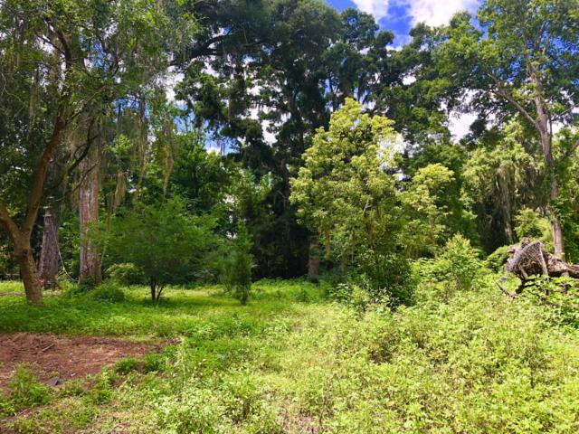 1755 SW 87 Place, Ocala, FL 34476 (MLS #556169) :: Bosshardt Realty