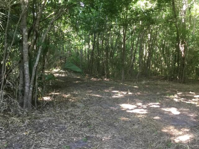 0 NW 197th Place, Micanopy, FL 32667 (MLS #556194) :: Pepine Realty