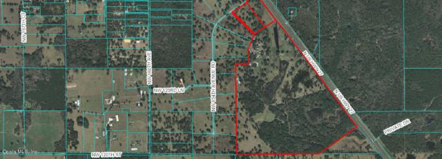 154 NW Ave Road, Morriston, FL 32668 (MLS #556419) :: Realty Executives Mid Florida