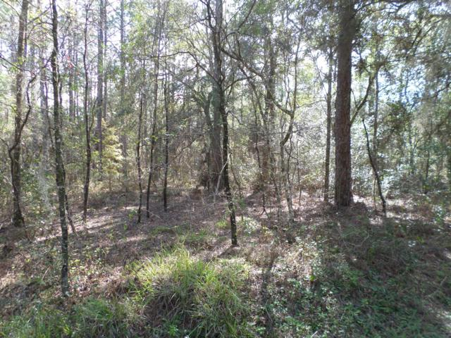 LOT 08 SW 34 Street, Dunnellon, FL 34432 (MLS #556435) :: Bosshardt Realty