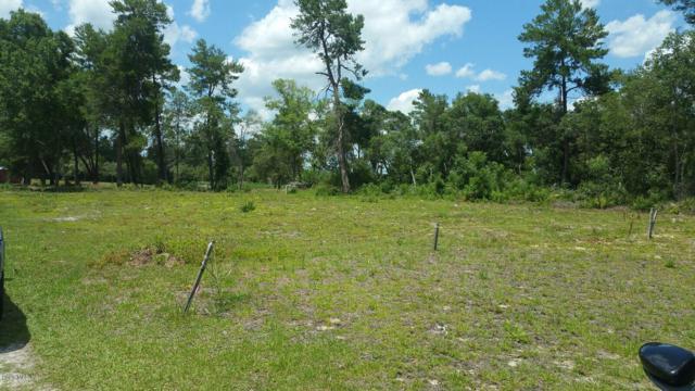 TBD SW 156 Lane Road, Ocala, FL 34473 (MLS #556438) :: Bosshardt Realty