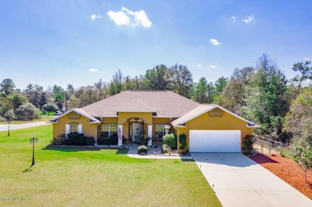 4378 SW 169th Place, Ocala, FL 34473 (MLS #556696) :: Bosshardt Realty