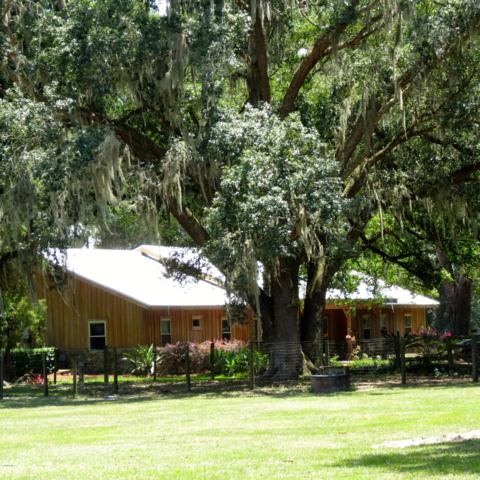 17550 NE 55TH Street, Williston, FL 32696 (MLS #556706) :: Bosshardt Realty