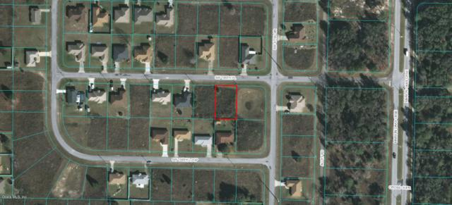 00 SW 136TH Place, Ocala, FL 34473 (MLS #556720) :: Pepine Realty