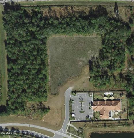870 Tomyn Boulevard, OCOEE, FL 34761 (MLS #556722) :: Bosshardt Realty