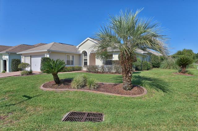 11032 SW 73 Court, Ocala, FL 34482 (MLS #556728) :: Pepine Realty