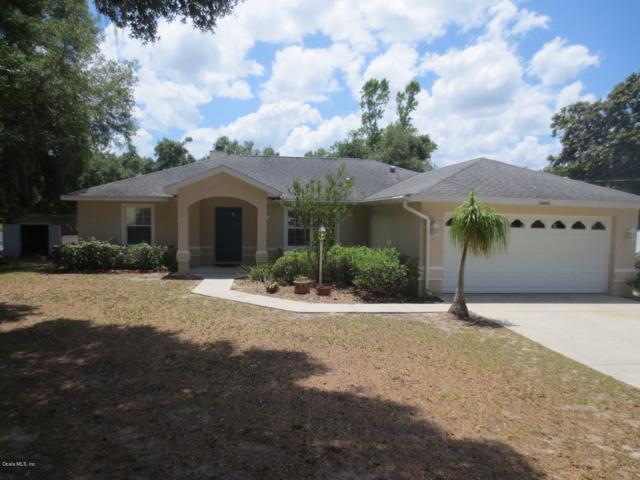 16906 SE 63rd Lane, Ocklawaha, FL 32179 (MLS #556767) :: Bosshardt Realty