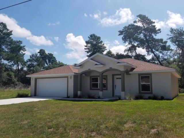 16811 SW 39th Circle, Ocala, FL 34473 (MLS #556807) :: Realty Executives Mid Florida